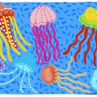 jelly fish 2