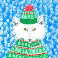arctic-fox
