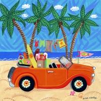 beach-convertible